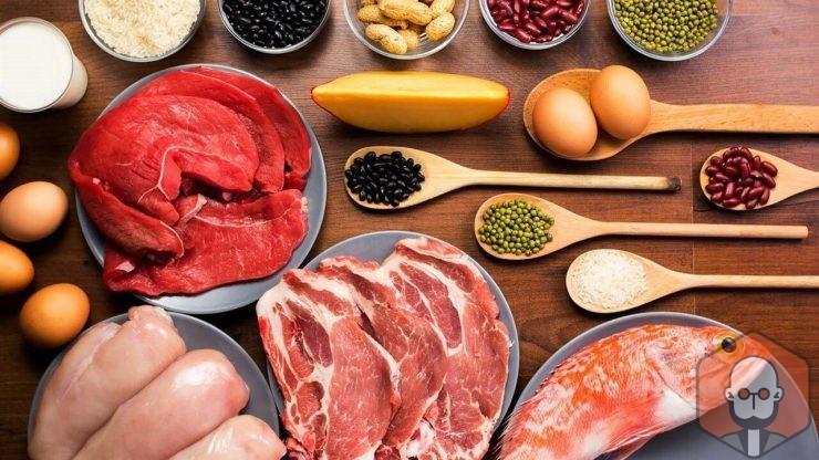Protein Kısaca Nedir, Ne İşe Yarar, Protein İçeren Besinler – Protein Kisaca Nedir Ne Ise Yarar Protein Iceren Besinler